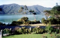 Fish Bay, Marlborough Sounds, NZ